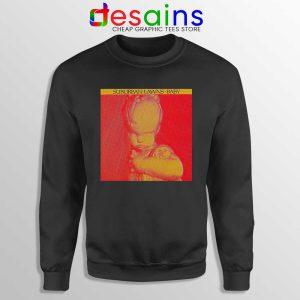 Baby Suburban Lawns Sweatshirt American Post-Punk Band Sweaters